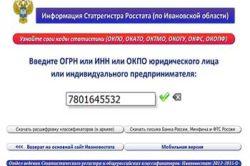 Поиск кодов ОКПО на сайте Росстата