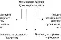 Организация бухгалтерского учета