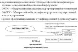 Характеристика кодов ОКПО для ИП