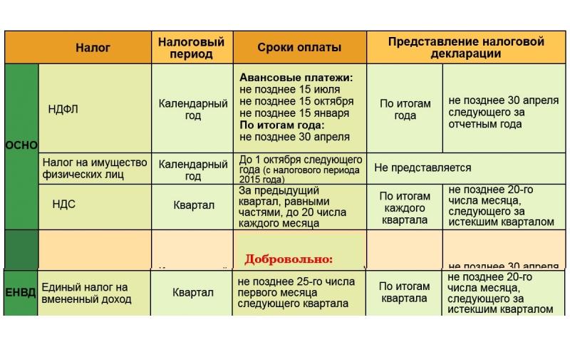 Отчетность по налогам ОСН и ЕНВД