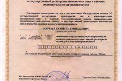 Образец свидетельства о регистрации ИП