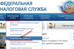 Проверка налоговой задолженности на сайте ФНС