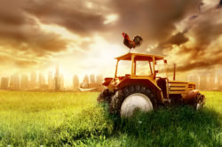 Льготы для ИП в сельскохозяйственной сфере