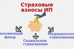 Оплата долгов по страховым взносам ИП