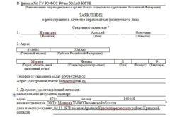 Пример бланка заявления о регистрации ИП в ФСС