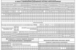 Декларация УСН по доходам минус расходы