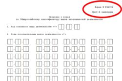 Свения о кодах по Общероссийскому классификатору видов экономической деятельности