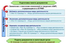 Глава ПФР Антон Дроздов: «Пенсии будут 6 лет расти выше...»