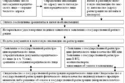 Регистрация кфх как ип инструкции по заполнению декларации 3 ндфл образец