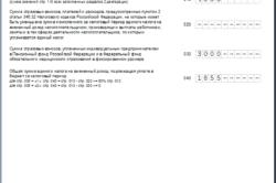 Изображение - Сроки сдачи отчетности для ип на енвд 4-stranica-250x166