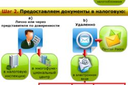Регистрация ип украинца образец заявления директора при регистрации ооо