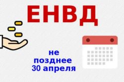 Сдача отчетности ЕНВД