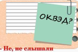 Изображение - Ип в декретном отпуске okved-250x166