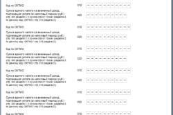 Изображение - Сроки сдачи отчетности для ип на енвд stranica2-250x166